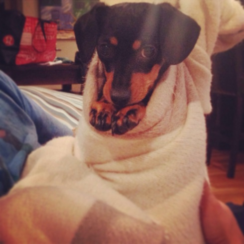 Sweet Winnie the Pooch all swaddled. Love our baby!